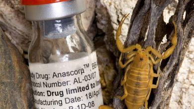 Photo of حقن سكوربيون انتي فينوم مصل العقرب المضاد للسم Scorbion anti Venom