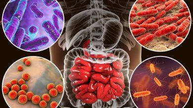 صورة تعرف علي افضل الادوية المعالجة لمختلف الانواع من الالتهابات البكتيرية التي تهاجم الجسم