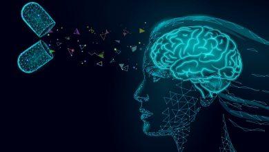 افضل المكملات الغذائية لتقوية الذاكرة وكيفية الوقاية من ضعف الذاكرة