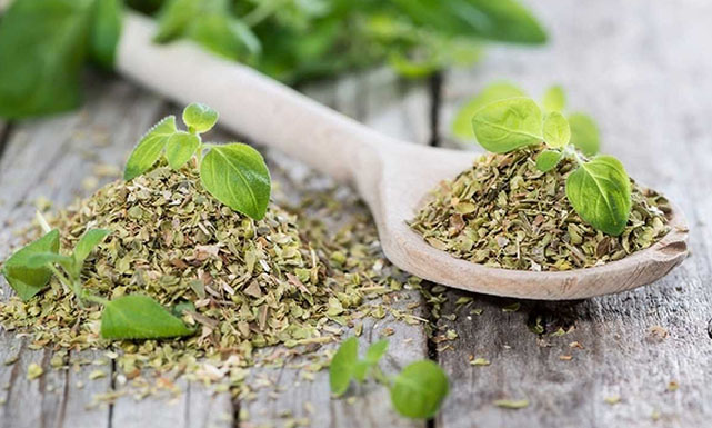 اعشاب طبيعيه تقوى جهاز المناعه فى الجسم