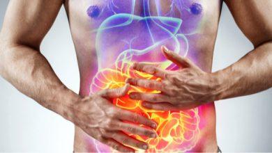 مشاكل الهضم الشائعة التي تصيب الجهاز الهضمي وطرق علاجها